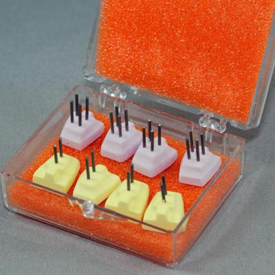 Adjustable Posterior Firing Pegs - Color-coded